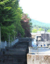The fish ladder at Pitlochry