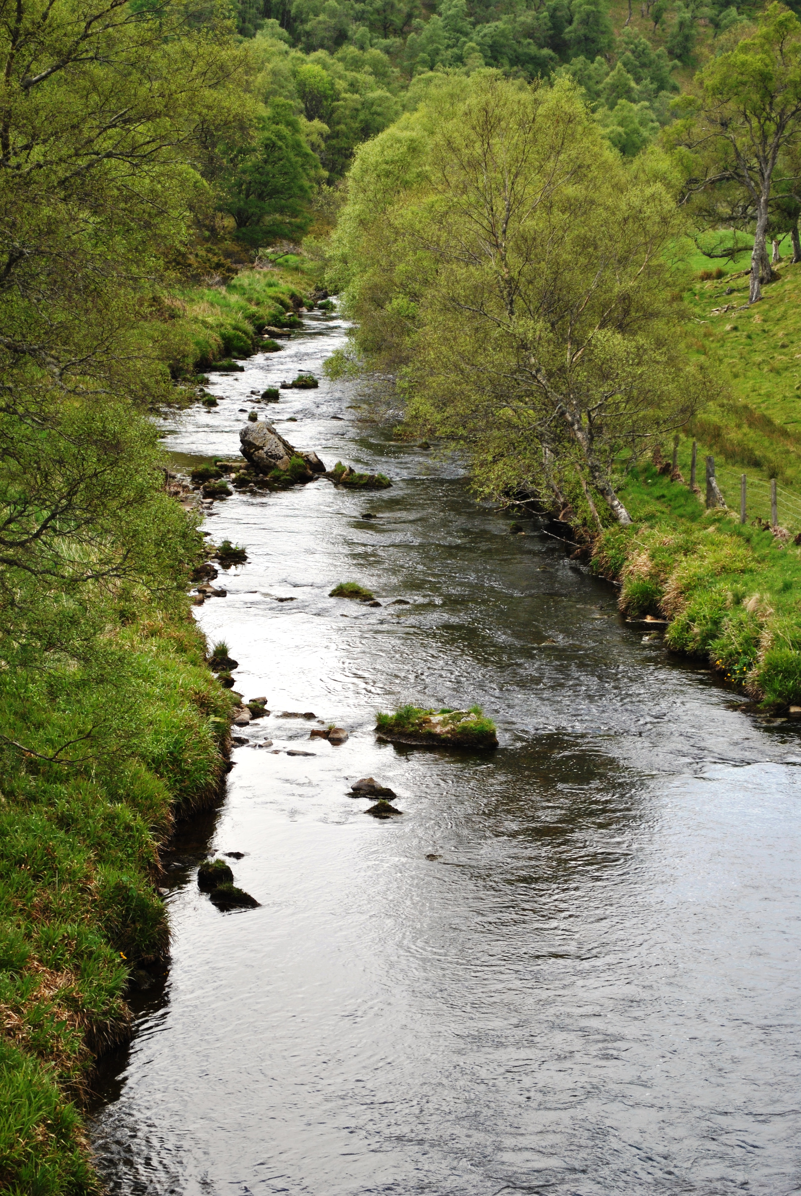 Down stream fromtThe bridge near Auchmar