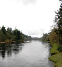 The river Tay at Meiklour