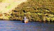 Boat fishing on Loganlea